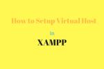 How to setup virtual host in xampp